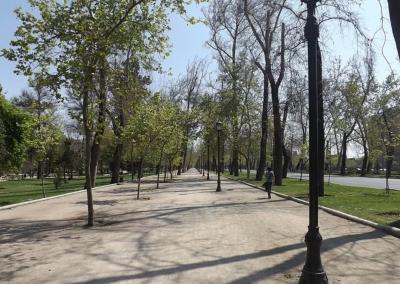 Parque-Forestal